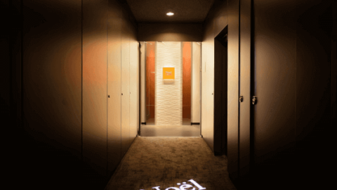 有楽町・銀座・銀座一丁目/医療ハイフ/ノエル銀座クリニック/ダブロ